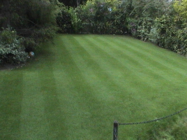 A hardwearing utility lawn can also be a fine lawn with our garden maintenance and lawn care team